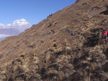 Khopra Danda Trek with Khaire Lake